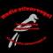 Radio Zilvervogel